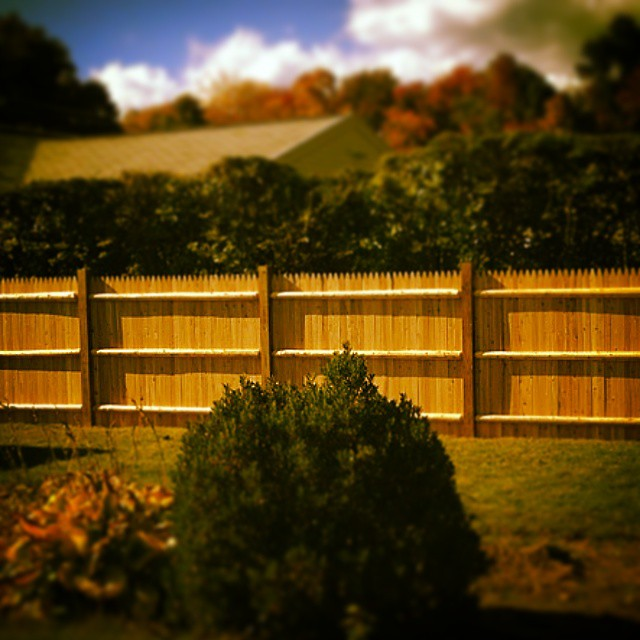 Stockade fence, Shrewsbury MA